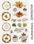 Vector Collection Of Autumn ...