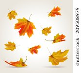 falling leaves set  vector...