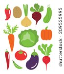 vegetables set. vector... | Shutterstock .eps vector #209525995