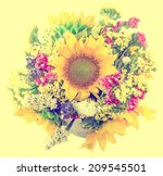 yellow sunflowers and colored... | Shutterstock . vector #209545501
