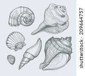 Vector Set With Hand Drawn Sea...