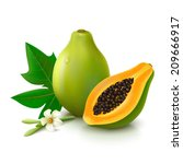 whole papaya with half  flower... | Shutterstock .eps vector #209666917