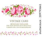 luxurious vintage frame of... | Shutterstock .eps vector #209793661