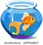 gold fish in aquarium on white... | Shutterstock . vector #209906827