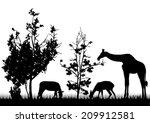 wild animals silhouettes   Shutterstock .eps vector #209912581