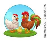 cartoon chicken family  vector...   Shutterstock .eps vector #210001075