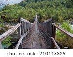 parque nacional of queulat ... | Shutterstock . vector #210113329