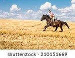 man ride horse on field  ... | Shutterstock . vector #210151669