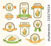 corn labels. vegetables color... | Shutterstock .eps vector #210174514