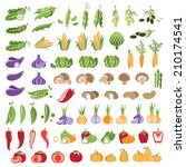 set of vegetables icons. color... | Shutterstock .eps vector #210174541