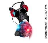 Dj Dog Listening To Music...