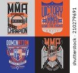 battaglia,bullone,boxe,gabbia,campione,cresta,decal,dominazione,emblema,lotta,palestra,araldica,fulmine,arti marziali,ottagono