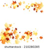 maple leaves background on... | Shutterstock . vector #210280285