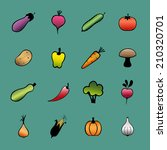 set of vector vegetables. hand... | Shutterstock .eps vector #210320701