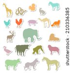 set of colorful animals... | Shutterstock .eps vector #210336385