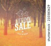 vector retro autumn sale... | Shutterstock .eps vector #210383629