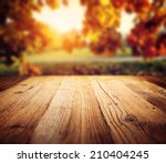 autumn background  | Shutterstock . vector #210404245