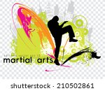 karate. editable vector  eps 10 | Shutterstock .eps vector #210502861