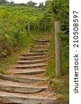 Wooden Stairs Between Green...