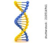 yellow blue dna molecule on a... | Shutterstock . vector #210516961