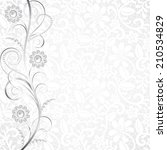 jewelry border on white lace... | Shutterstock .eps vector #210534829