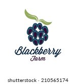 blackberry farm illustration | Shutterstock .eps vector #210565174