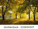 Colorful Autumn Landscape With...