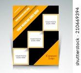 vector professional business... | Shutterstock .eps vector #210669394