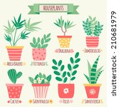 set of houseplants in pots. | Shutterstock .eps vector #210681979