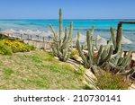 beach and sea in marsa alam ... | Shutterstock . vector #210730141