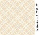 the geometric pattern. seamless ... | Shutterstock . vector #210732187