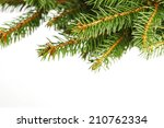 christmas tree branch isolated... | Shutterstock . vector #210762334