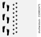 bare foot print and paw print... | Shutterstock . vector #210802471