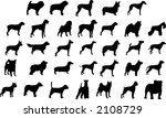 dog breeds silhouettes | Shutterstock .eps vector #2108729