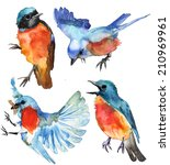 watercolor blue birds on white... | Shutterstock . vector #210969961