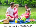 happy young family picnicking... | Shutterstock . vector #210980635