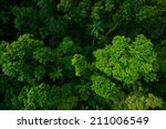 rain forest from air near...   Shutterstock . vector #211006549