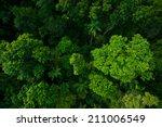 Rain Forest From Air Near...