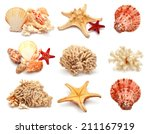 collection of sea stars  shells ... | Shutterstock . vector #211167919