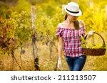 woman  walking in vineyard and... | Shutterstock . vector #211213507