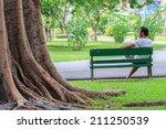 Big Tree In Public Garden Cove...