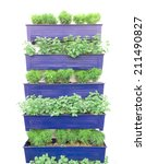 Plant Herbs In Pots Hang On The ...