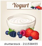 yogurt with berries.  detailed... | Shutterstock .eps vector #211538455