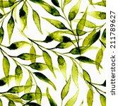 hand painted watercolor ink... | Shutterstock .eps vector #211789627