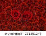 Stock photo red roses background high angle view 211801249