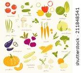 assorted vegetable vector... | Shutterstock .eps vector #211848541