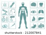 medical info graphics. human... | Shutterstock .eps vector #212007841
