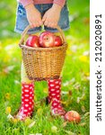 Kid Holding Basket With Apples...