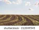 Empty Field With Red Earth And...