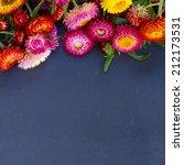everlasting flowers border on... | Shutterstock . vector #212173531